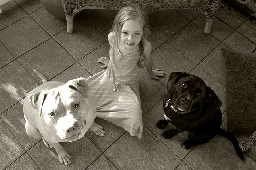 A child and two dogs